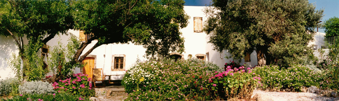 Yoga on Crete house, Chora Sfakion, Crete